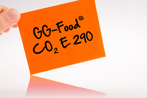 GlobalGas GG-Food CO2 E 290.