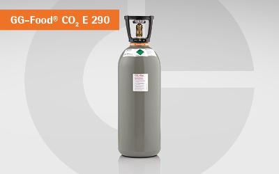 GlobalGas Kohlendioxid E 290 Gasflasche